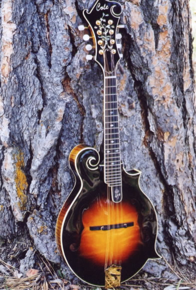 One of a kind Mandolins